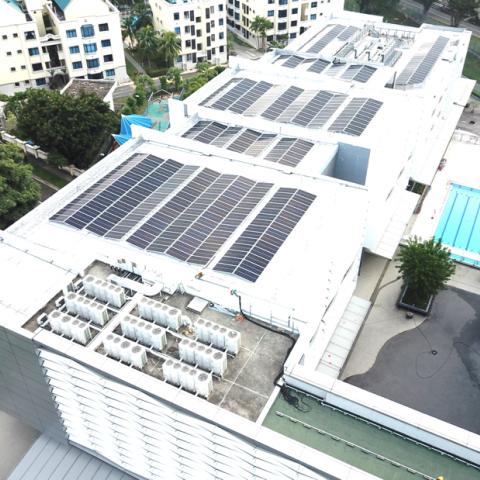 New solar panels installed in Stamford American International School